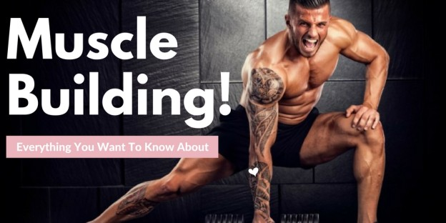 Everything You Want To Know About Muscle Building
