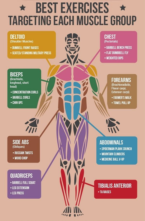 Different exercises for different parts of the body