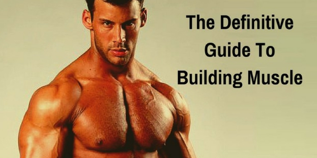 The definitive guide to building muscles