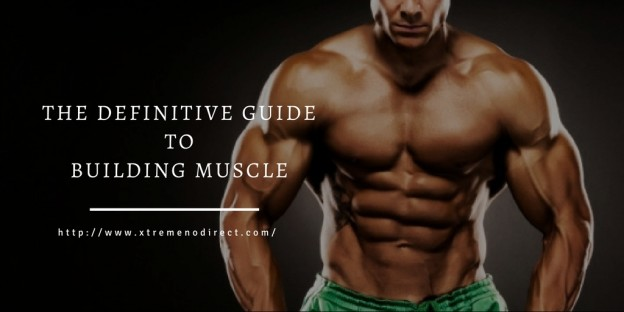 The Definitive Guide To Building Muscle
