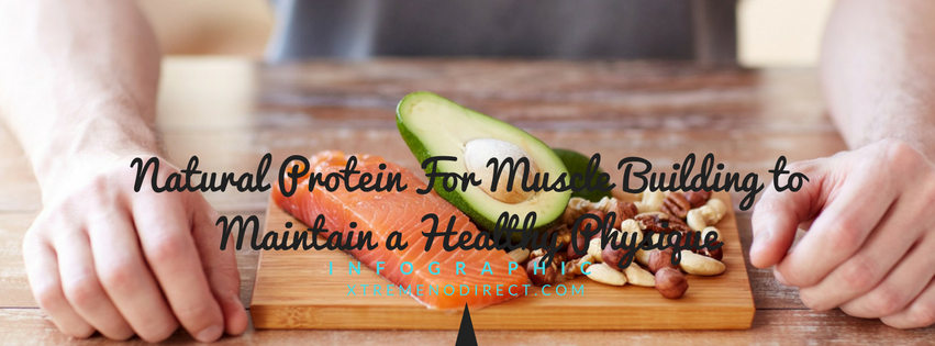 protein for muscle