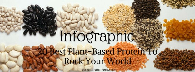 best plant based protein