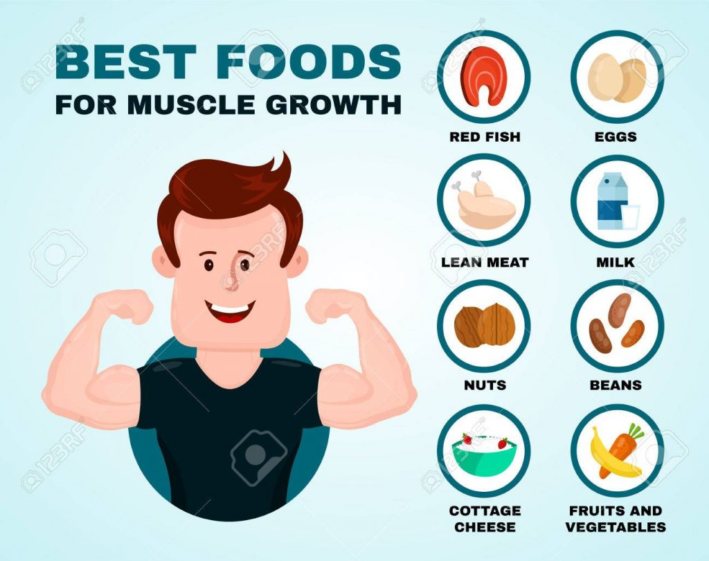 Best foods for muscle growth