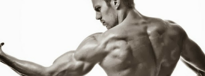 best workout for muscle